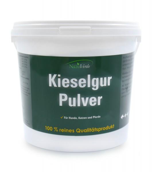 Kieselgur-Pulver 1000g